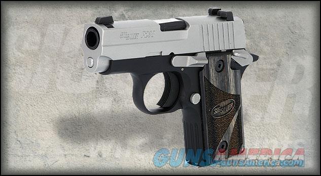 SIG P238 BLACKWOOD  Guns > Pistols > Sig - Sauer/Sigarms Pistols > P238
