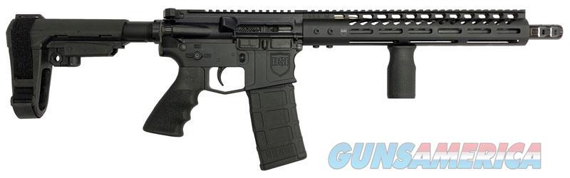"DARK STORM INDUSTRIES DS-15 NON NFA ""OTHER"" 223  Guns > Rifles > D Misc Rifles"