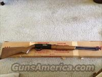 Winchester Model 190 - 22 cal  Guns > Rifles > Winchester Rifles - Modern Bolt/Auto/Single > Autoloaders