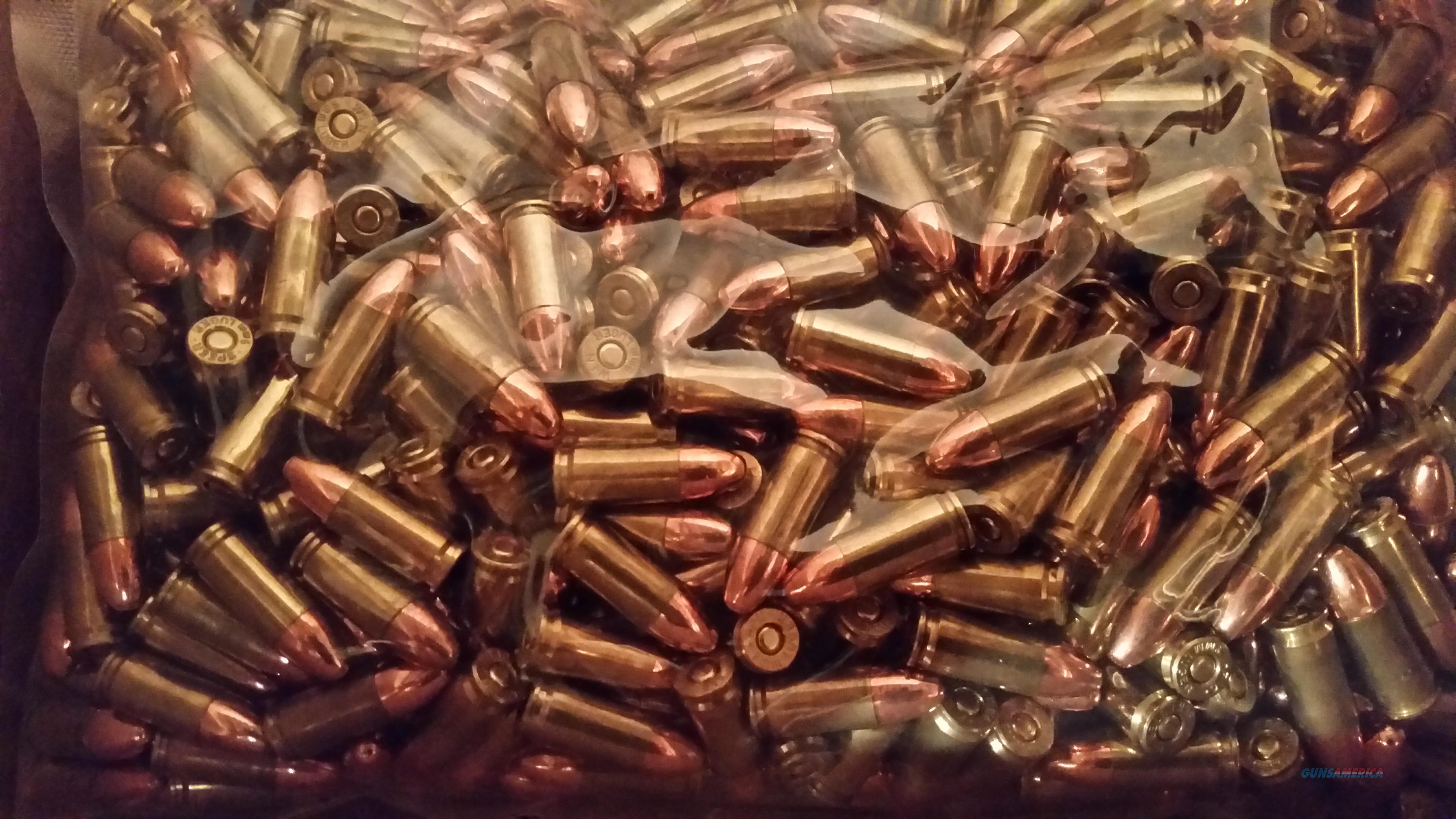 1000 9mm 124gr. RN Range Ammo   Non-Guns > Ammunition