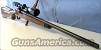 Remington 700 Bull Barrel 6mm  Guns > Rifles > Remington Rifles - Modern > Model 700 > Sporting