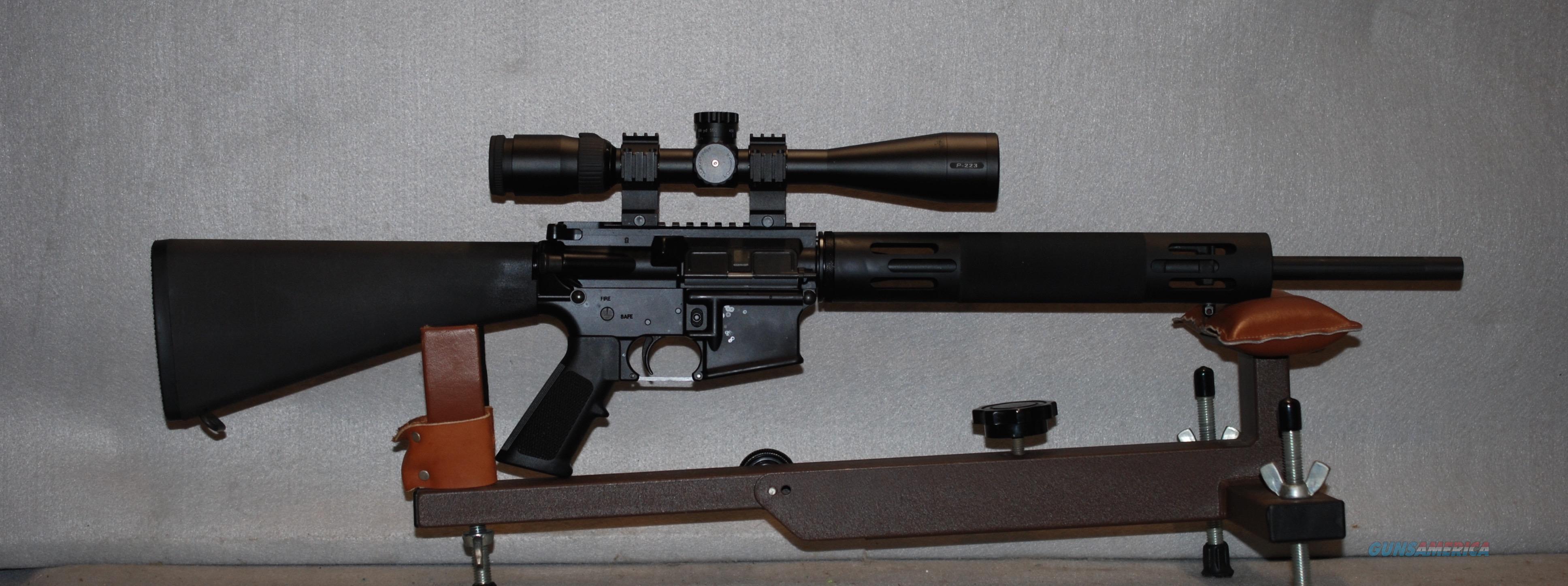 "AR 15 ""sniper"" Bushmaster with scope"
