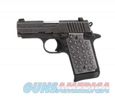Sig Sauer P938 9mm 3in SS We The People  Guns > Pistols > Sig - Sauer/Sigarms Pistols > P938