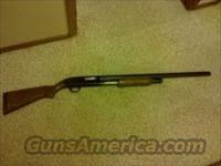 Mossberg 500a 12 gauge  Guns > Shotguns > Mossberg Shotguns > Pump > Sporting