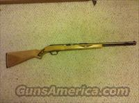 springfield -savage arms- semi auto .22 model 187 T-S  Guns > Rifles > A Misc Rifles