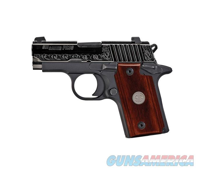 "Sig Sauer P238 ESR Single 380 ACP 2.7"" 6+1 - New in Box  Guns > Pistols > Sig - Sauer/Sigarms Pistols > P238"