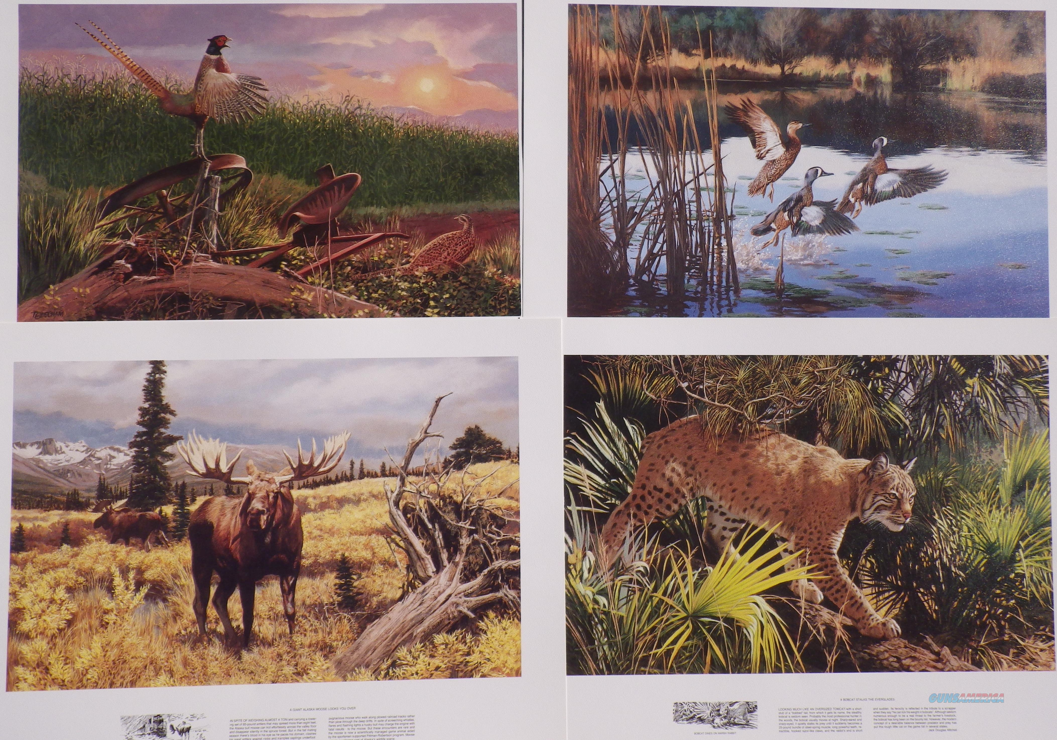 Remington Wildlife Art Collection 1991 set of four wildlife posters  Non-Guns > Artwork
