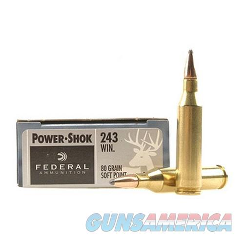 243 Win 80gr SP Power-Shock /20  Non-Guns > Miscellaneous