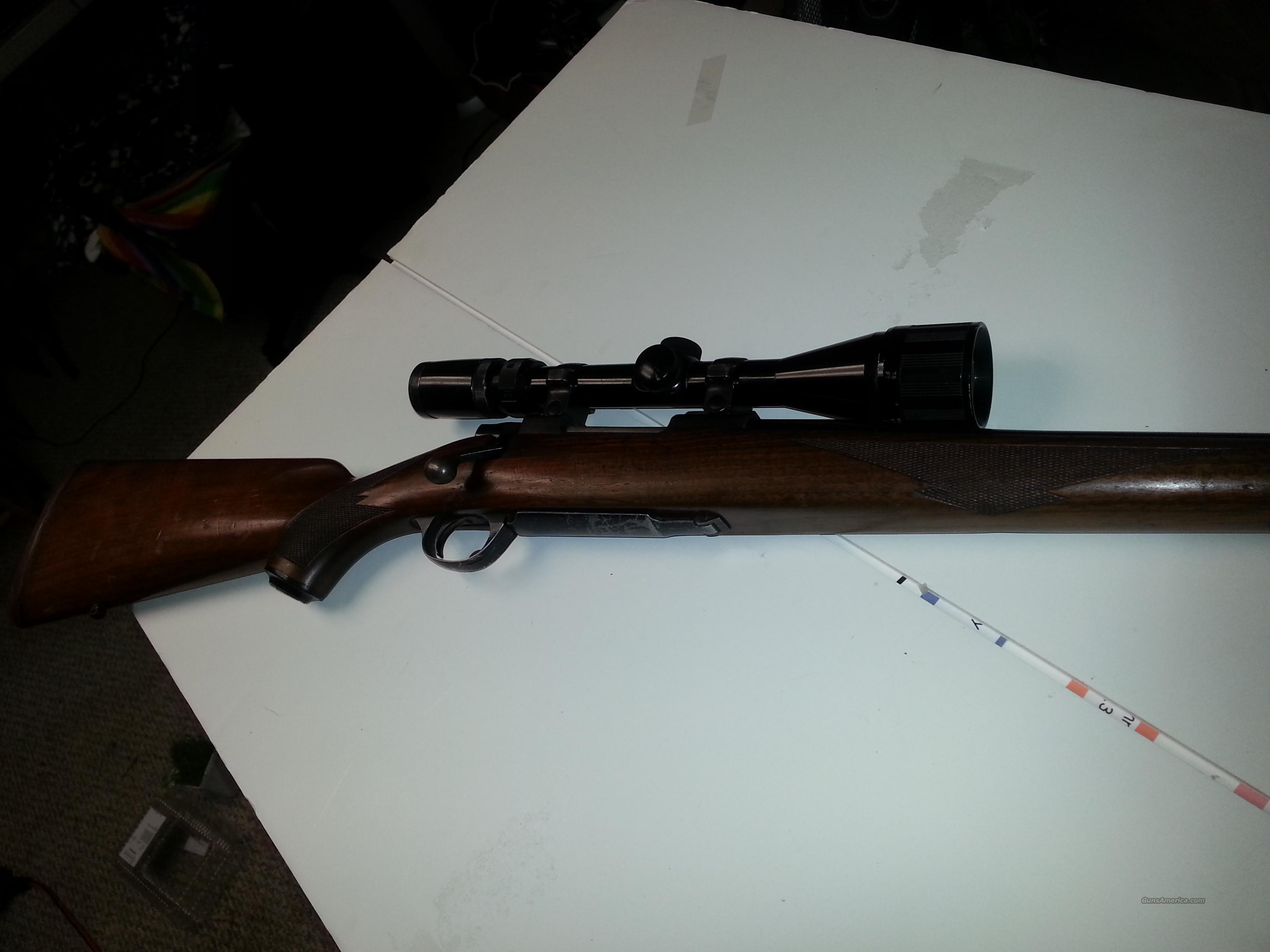 Ruger M77 .243 WIN w/Scope  Guns > Rifles > Ruger Rifles > Model 77