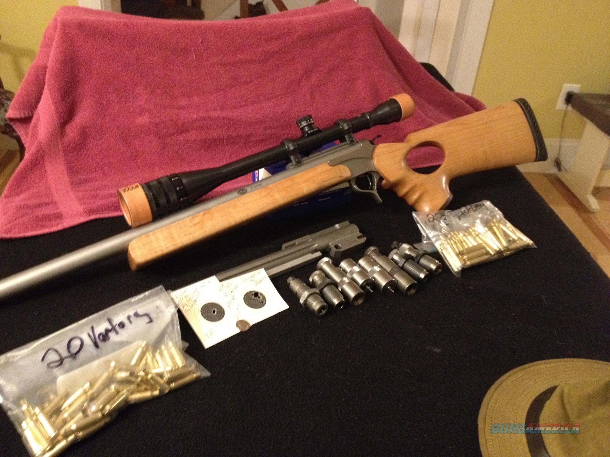 Virgin Valley Guns 119