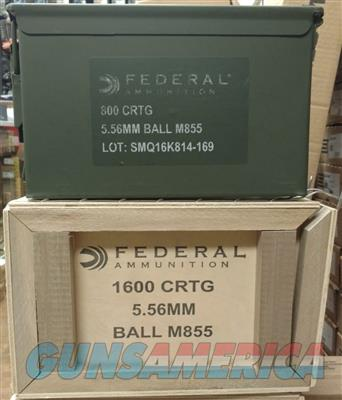 XM855 Lake City Green Tip 62gr  5.56 AR-15 AR15 AMMO  800 Rounds in 50 Cal Sized Ammo Can XM855LPCC800  Non-Guns > Ammunition