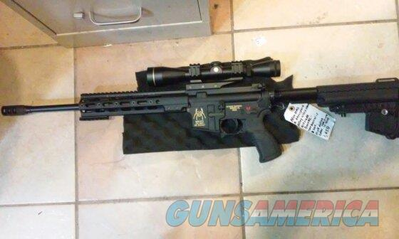 Custom Built AR-15 (300 Blackout)  Guns > Rifles > AR-15 Rifles - Small Manufacturers > Complete Rifle