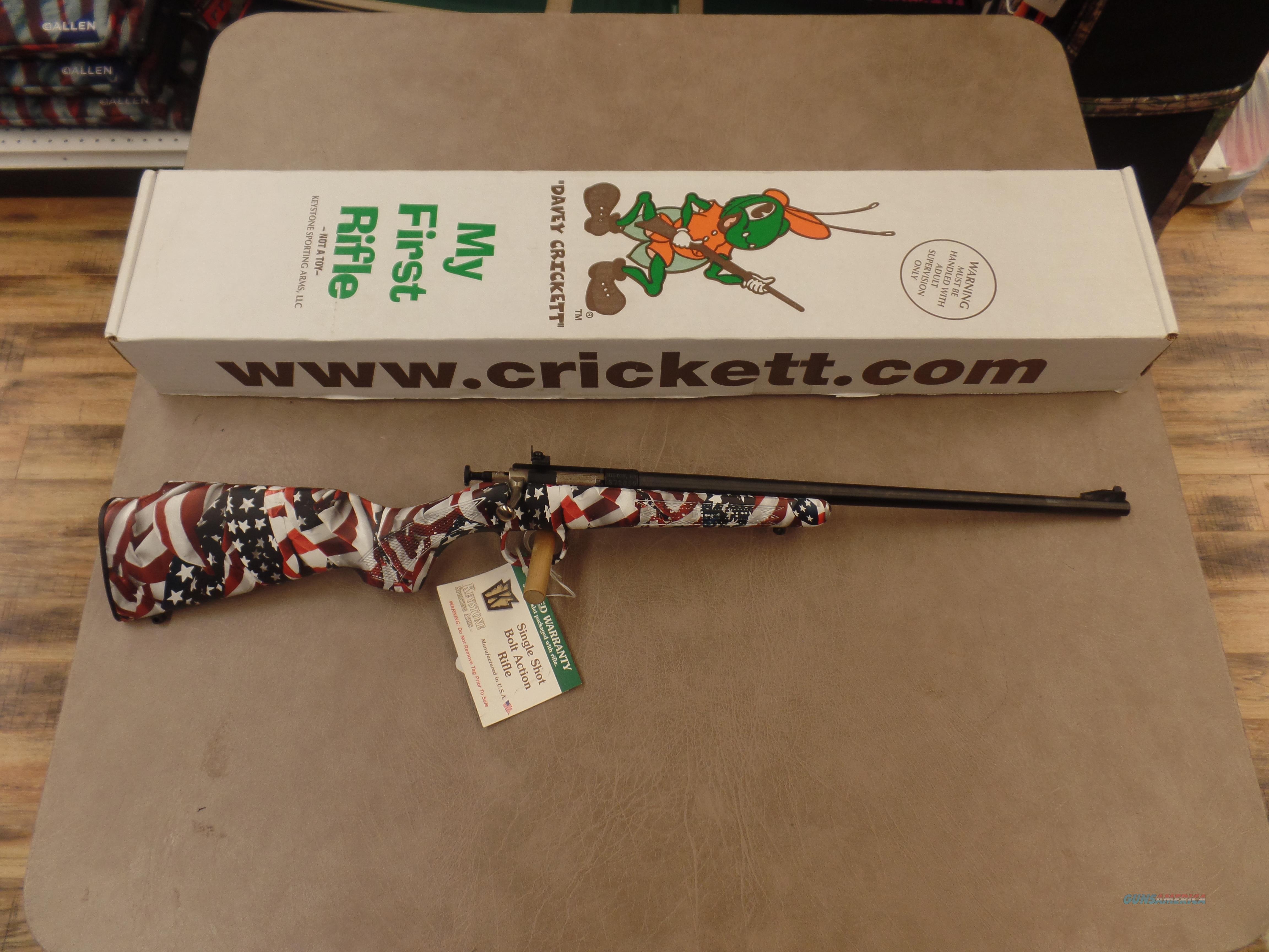 Keystone Arms Crickett American Flag Blued (22LR)  Guns > Rifles > Crickett-Keystone Rifles