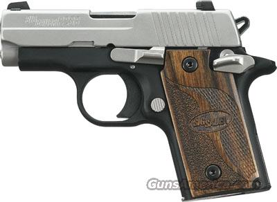 P238 SAS DISTRIBUTOR EXCLUSIVE .380 ACP  Guns > Pistols > Sig - Sauer/Sigarms Pistols > Other