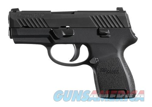 SIG SAUER P320 SUB-COMPACT 9MM W/SIGLITE NIGHT SIGHTS & TWO 12 RD MAGS - FREE SHIPPING - TXPAT ARMORY LLC  Guns > Pistols > Sig - Sauer/Sigarms Pistols > P320