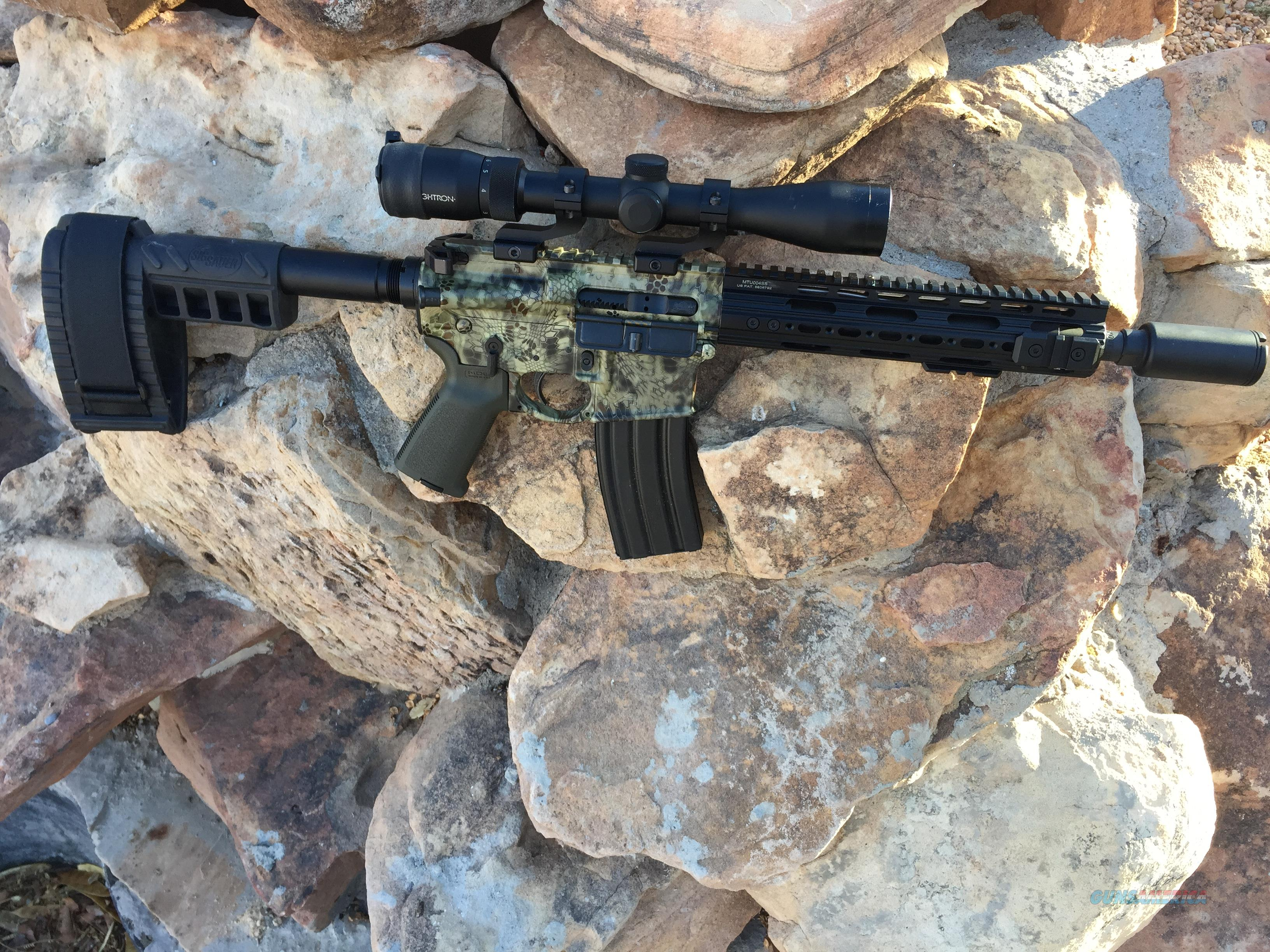 AR-15 Pistol 300 Blackout10.5 Barrel Graphics by Carnivore of Albuquerque  Guns > Rifles > AR-15 Rifles - Small Manufacturers > Complete Rifle