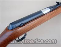 Daisy Heddon VL 22 Rifle with WOOD STOCK and Original Case with CASELESS AMMO  Guns > Rifles > D Misc Rifles