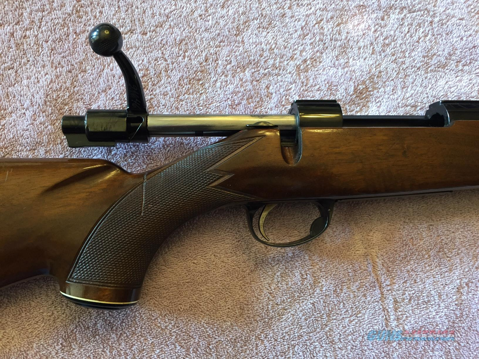 REDUCED - SAKO Forester .243 Cal Model L579  Guns > Rifles > Sako Rifles > Other Bolt Action