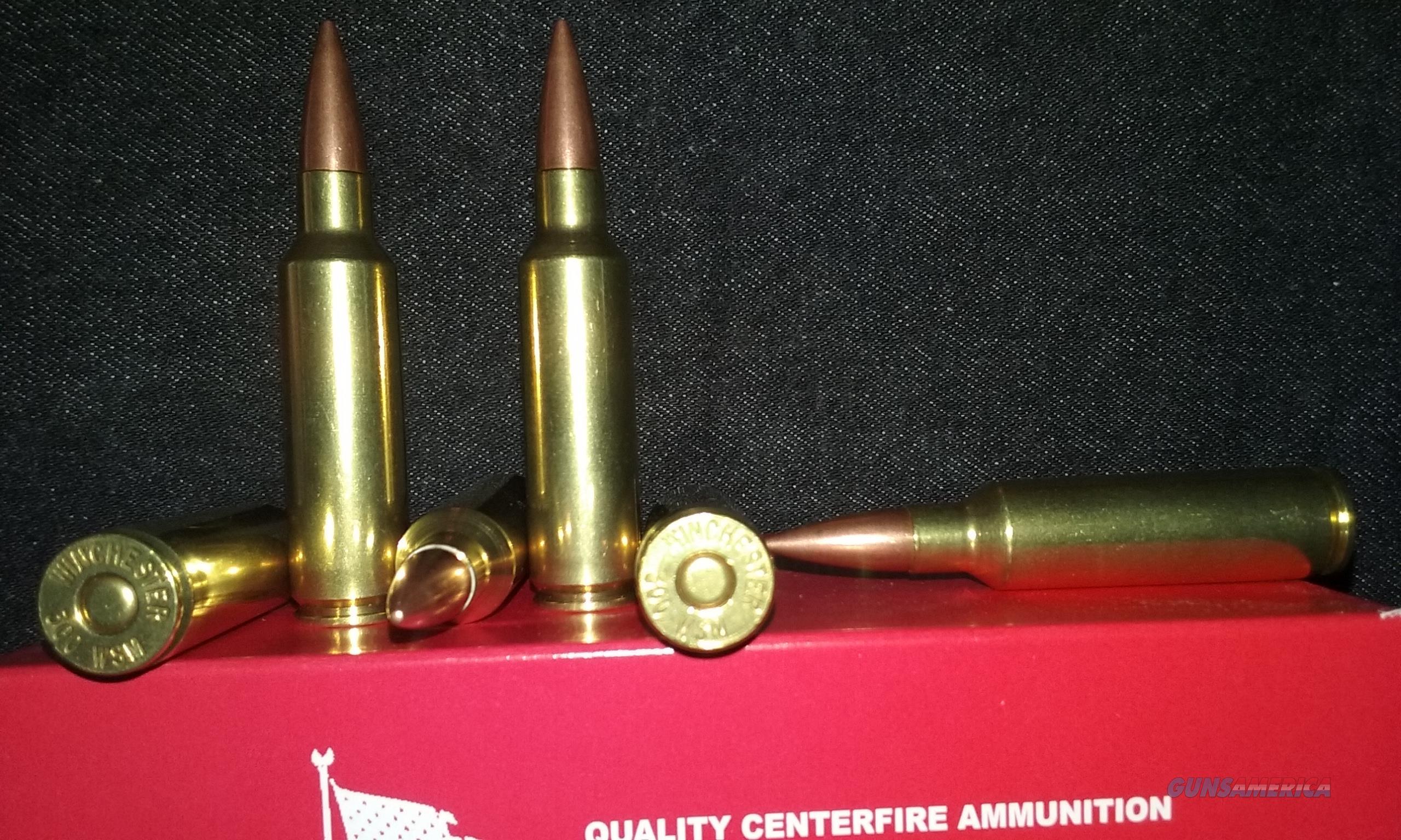 300 Winchester Short Magnum Ammo. (300 WSM)  Non-Guns > Ammunition