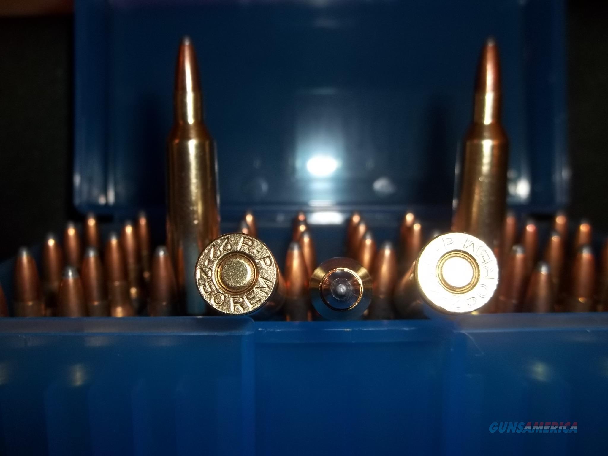 22-250 Remington Ammo.  Non-Guns > Ammunition