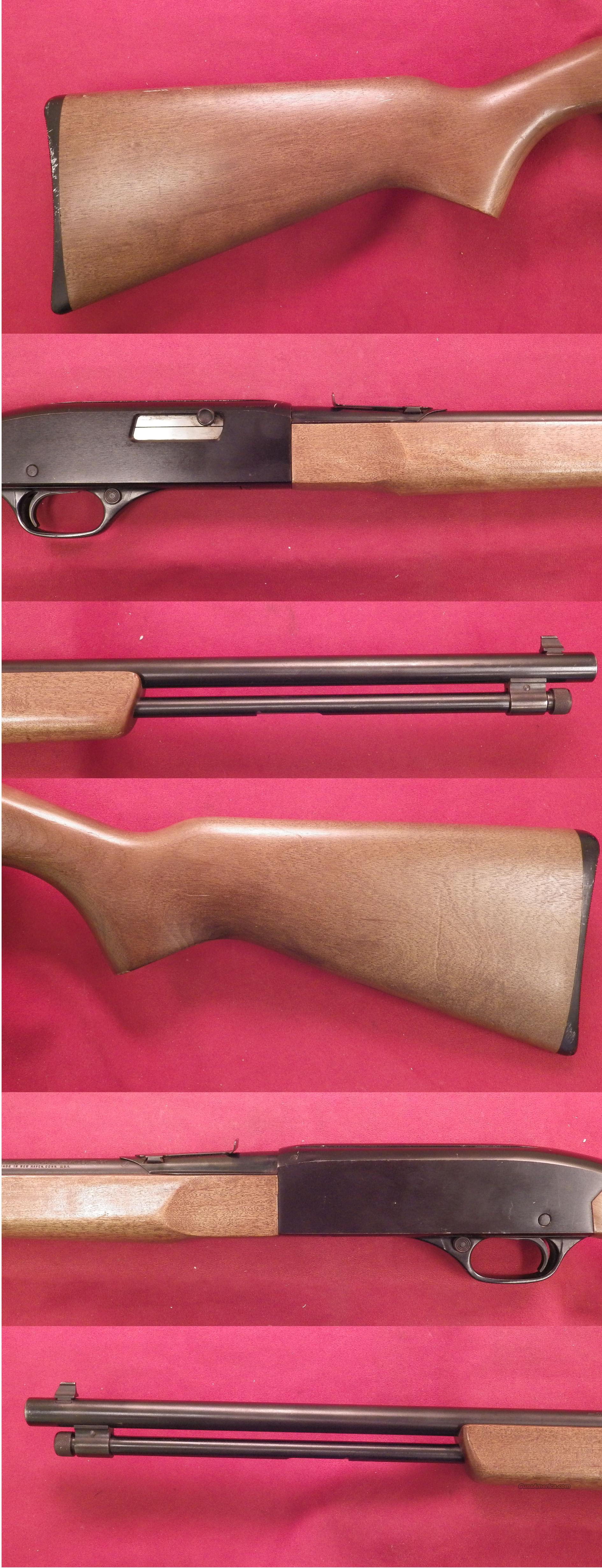 Winchester model 190 .22L,LR *MUST CALL*  Guns > Rifles > Winchester Rifles - Modern Bolt/Auto/Single > Autoloaders