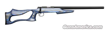 CZ 455 Varmint EVOLUTION .22 LR *MUST CALL*  Guns > Rifles > CZ Rifles