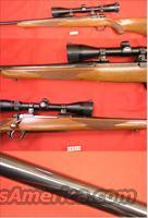 Ruger M77 Bolt Action 7mm Magnum  Guns > Rifles > Ruger Rifles > Model 77