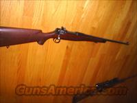 Custom 1917 Enfield 30-06  Guns > Rifles > Custom Rifles > Bolt Action