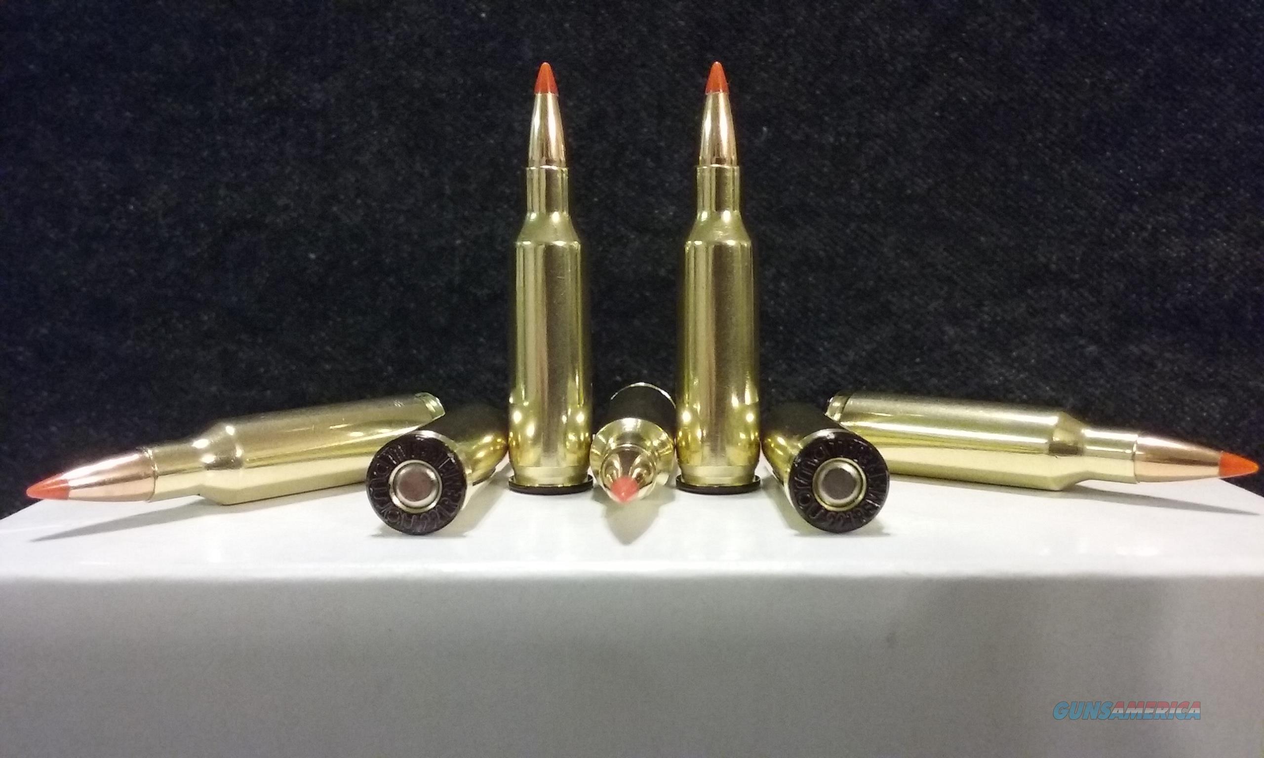 20 VarTarg Ammo.  Non-Guns > Ammunition