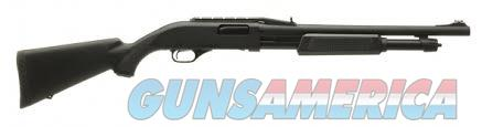 FNH P-12 Pump Shotgun  Guns > Shotguns > FNH - Fabrique Nationale (FN) Shotguns > Pump