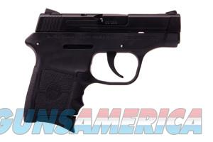Smith & Wesson 380 Bodyguard   Free Shipping   Guns > Pistols > Smith & Wesson Pistols - Autos > Polymer Frame