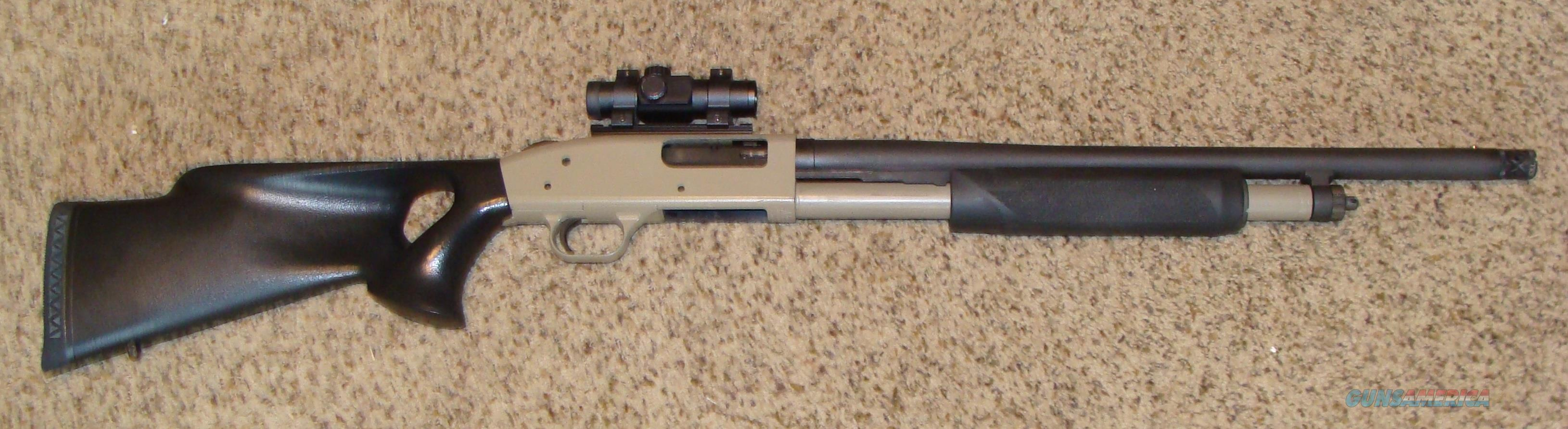 Mossberg Turkry/Self Defense 12ga.  Guns > Shotguns > Mossberg Shotguns > Pump > Sporting