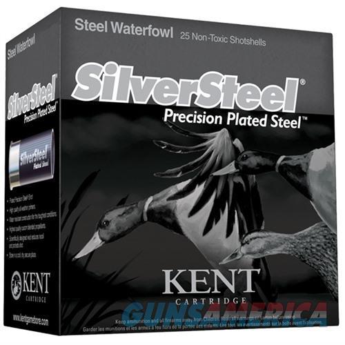 Kent SilverSteel 12ga 3'' 1-1/4oz #BB 25/bx  Non-Guns > Ammunition