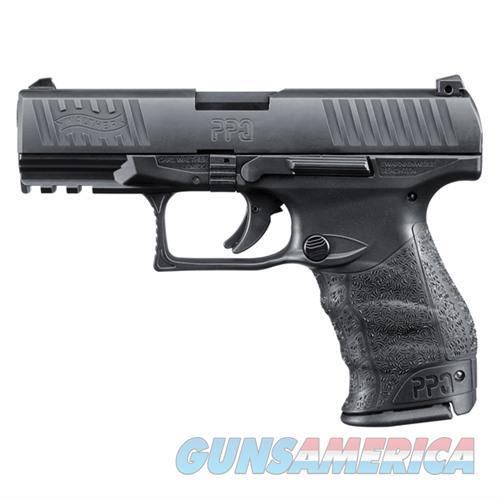 Walther PPQ M2 40 S&W 4.1''  Barrel 11rd  Guns > Pistols > Walther Pistols > Post WWII > P99/PPQ