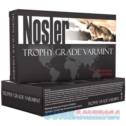 Nosler Trophy Grade Varmint Ammo 223 Rem 55gr E-Tip 20/bx  Non-Guns > Ammunition