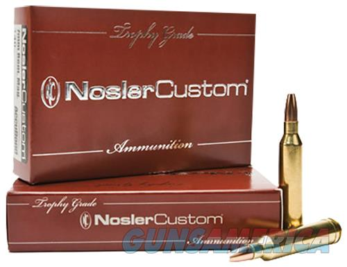 Nosler 60060 Trophy 300 H&H Mag 180 Gr Accubond 20 Bx/10 Cs Brass 054041600606  Non-Guns > Ammunition