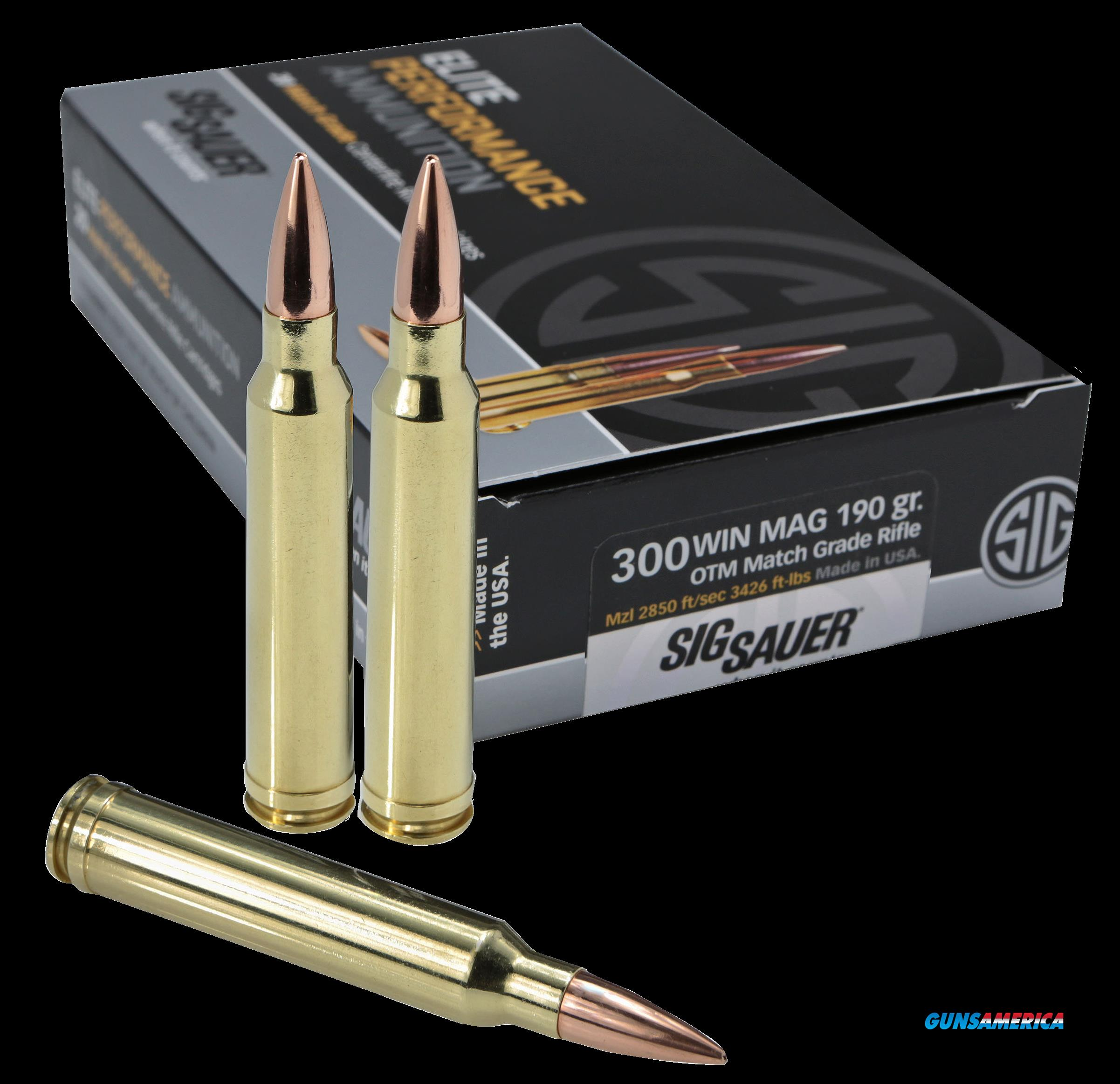 Sig Sauer Elite Match Grade, Sig E3wmm1-20    300mg    190 Otm Mtch  20-10  Guns > Pistols > 1911 Pistol Copies (non-Colt)