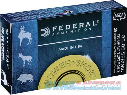 Federal Power-shok, Fed 3006cs     3006   125 Spph           20-10  Guns > Pistols > 1911 Pistol Copies (non-Colt)