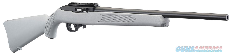 Ruger 10-22, Rug 31139 10-22     22lr 18.5 Syn Scp Bs Adpt Gray  Guns > Pistols > 1911 Pistol Copies (non-Colt)