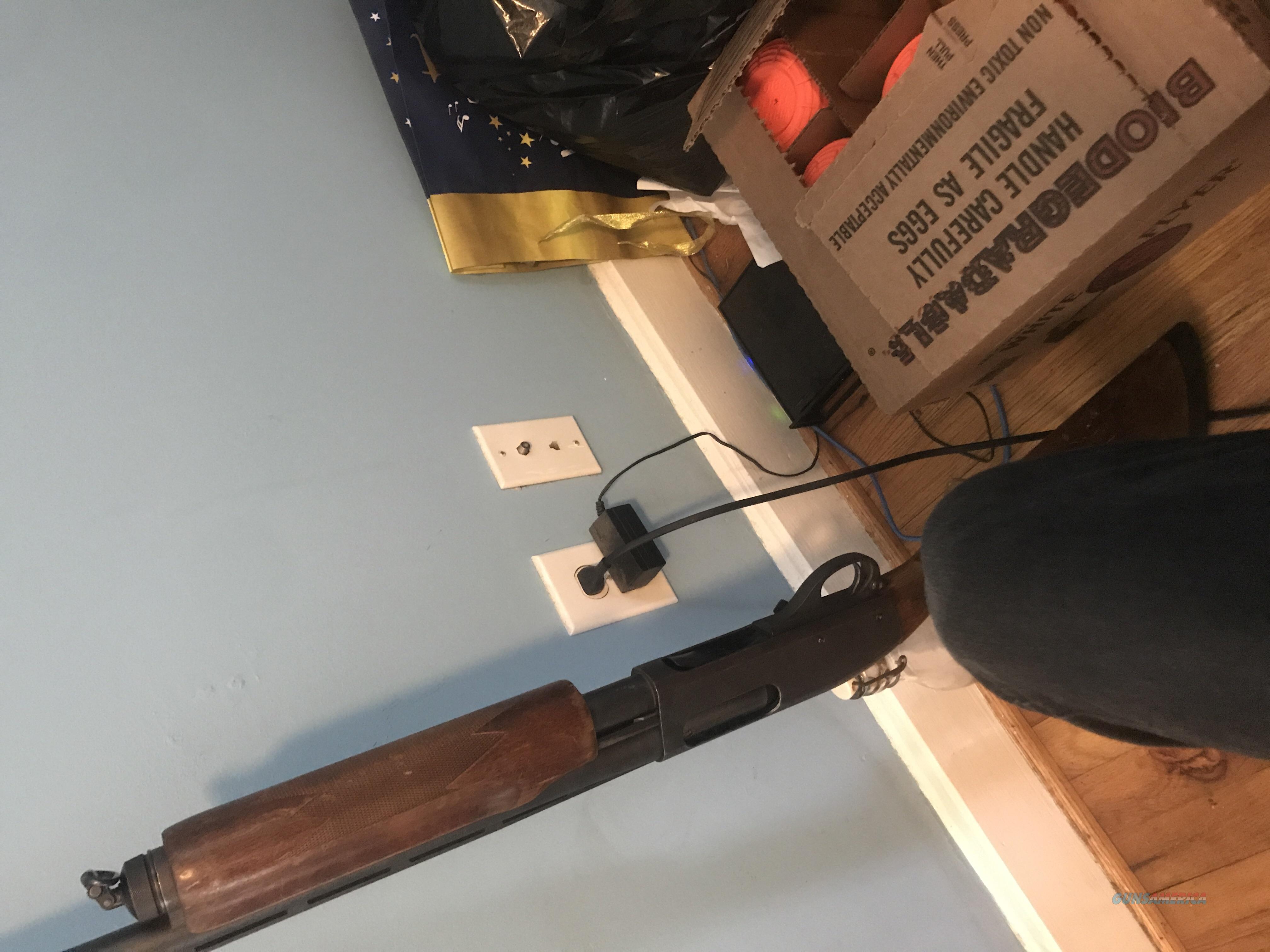 Remington 870 Magnum 12 GA  Guns > Shotguns > Remington Shotguns  > Pump > Hunting