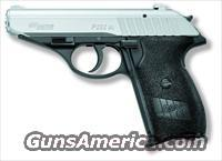 SIG SAUER P232 .380 (GREAT PRICE)  Guns > Pistols > Sig - Sauer/Sigarms Pistols > P232