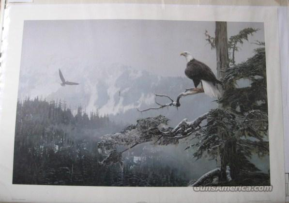 "Terry Isaac's ""On Eagles Wings"" artists proof  Non-Guns > Artwork"