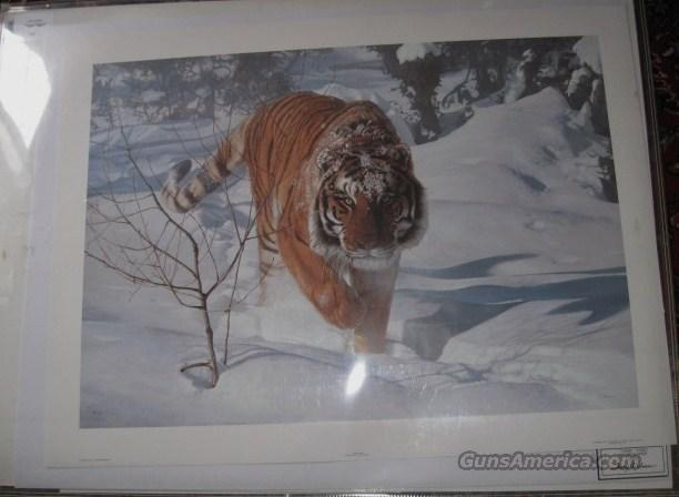 "Isaac, ""Tyger Tyger"" artist proof  Non-Guns > Artwork"