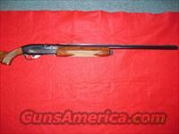 BROWNING GOLD HUNTER 3 1/2  Guns > Shotguns > Browning Shotguns > Autoloaders > Hunting