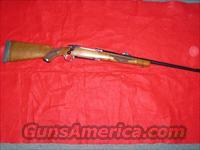 RUGER M77  300 WIN MAG  Guns > Rifles > Ruger Rifles > Model 77