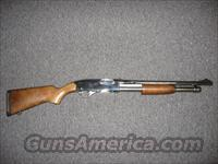 Winchester 1300 Stainless Marine  Guns > Shotguns > Winchester Shotguns - Modern > Pump Action > Defense/Tactical