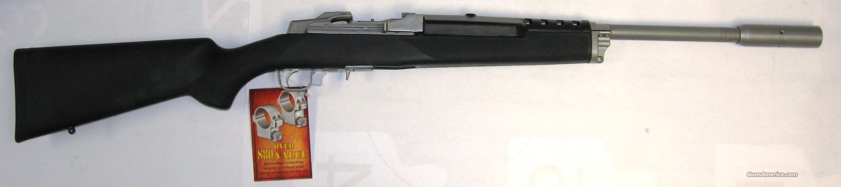 Ruger Mini-14 Target Ranch Rifle   Guns > Rifles > Ruger Rifles > Mini-14 Type