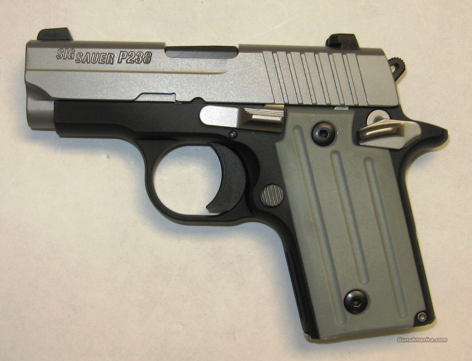 Sig Sauer P238 Two-Tone w/ Nightsights  Guns > Pistols > Sig - Sauer/Sigarms Pistols > P238