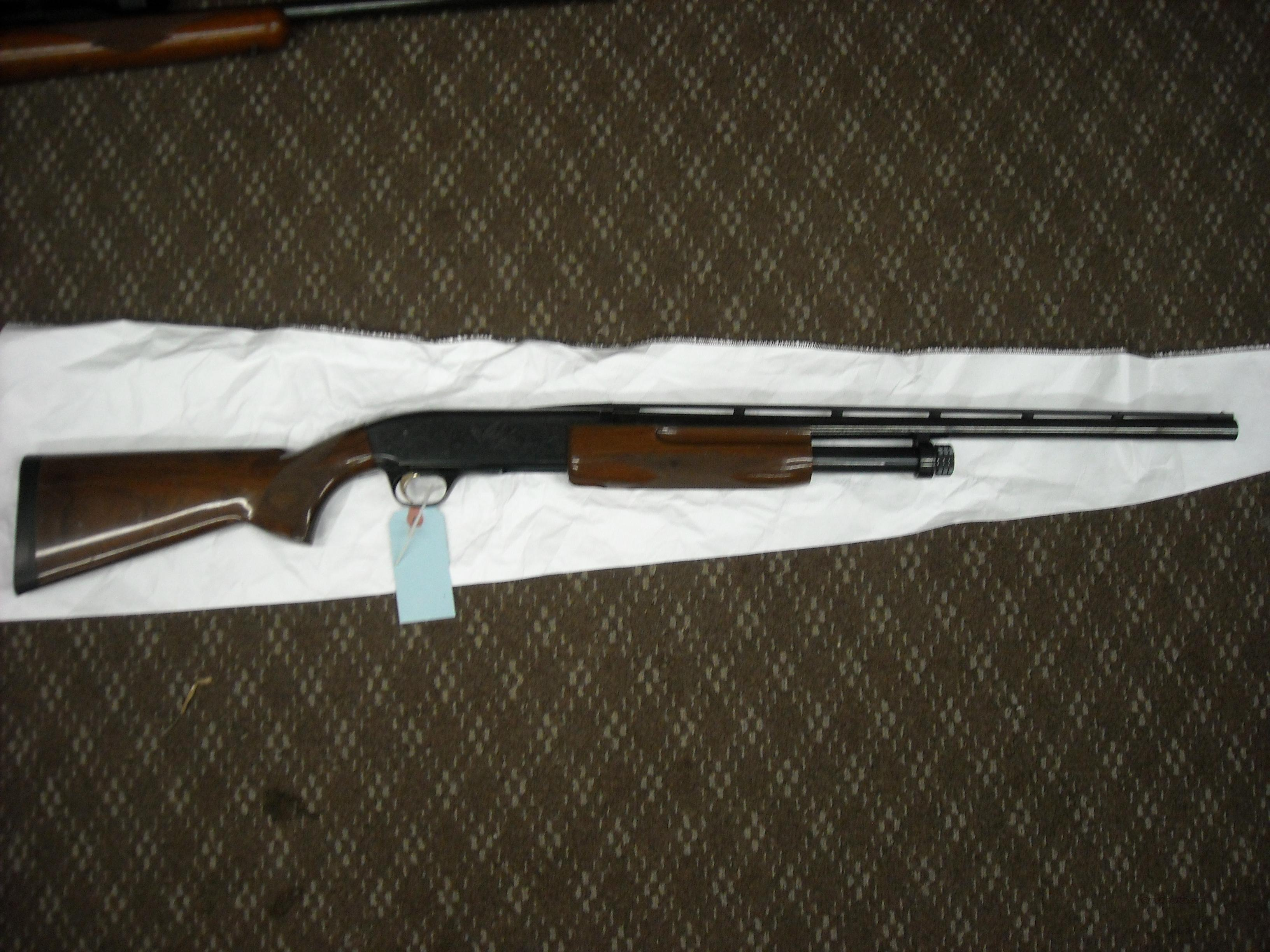 "browning bps 20ga wood stock 22"" barrel  Guns > Shotguns > Browning Shotguns > Pump Action > Hunting"