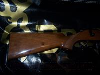 Browning A-Bolt .22  Browning Rifles > Bolt Action > Hunting > Blue